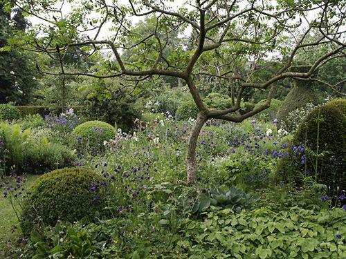 Paul den Hollander's garden