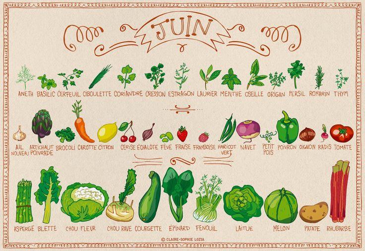 Mange des fruits et légumes de saison : printemps | Clémentine la Mandarine