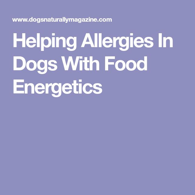 Helping Allergies In Dogs With Food Energetics