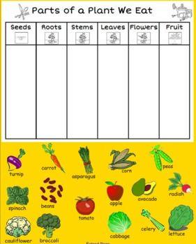 Partes de la planta : hacer un mural similar e ir pegando en cada columna la parte de la que nos alimentamos.