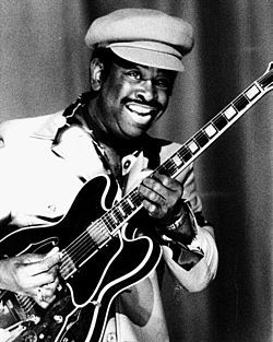 Mighty Joe Young in 1976. Mighty Joe Young (September 23, 1927 – March 27, 1999) was an American Chicago blues guitarist. Born Joseph Young in Shreveport, Louisiana, he died in Chicago, Illinois. Though born in Louisiana, Young was raised in Milwaukee. He first began playing in the early 1950s by singing in Milwaukee nightclubs. By the mid-1950s, Young had recorded his first song for Jiffy Records in Louisiana.