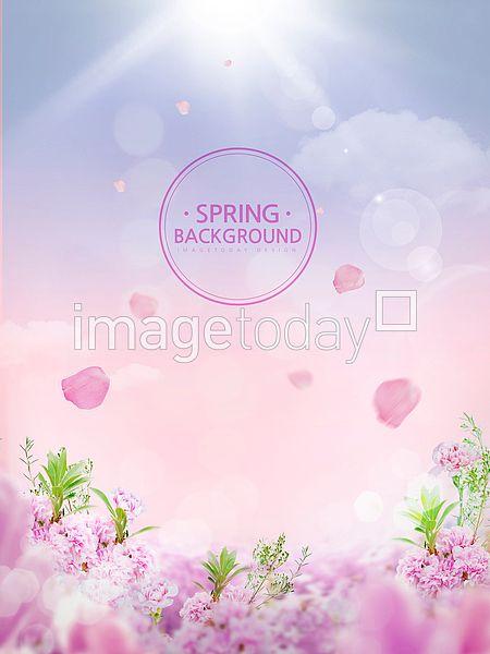 PSD 디자인소스 이미지 디자인 계절 봄 배경 백그라운드 보케 꽃 분홍색 햇빛 하늘 태양  콘텐츠 design designsource image season spring background flower pink sky sun image design contents 이미지투데이 통로이미지 #imagetoday #tongroimage