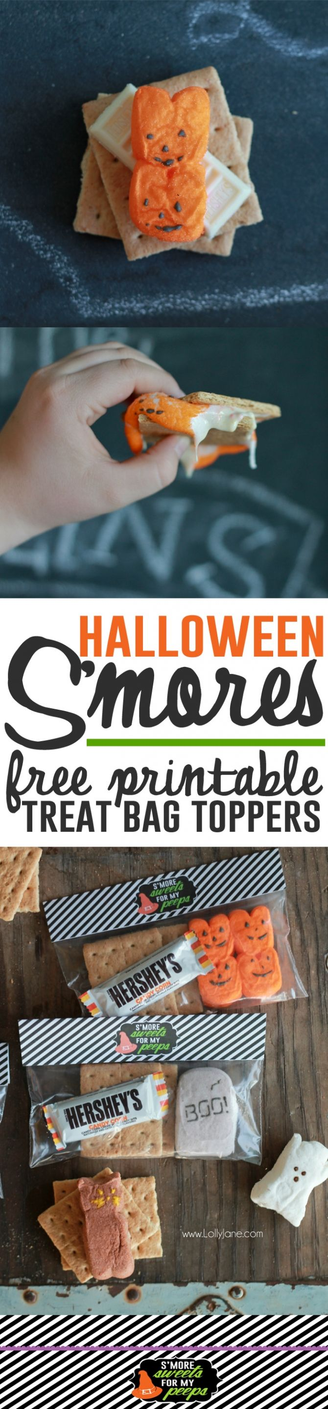 FREE Halloween S'more bag toppers, cute kids gift idea or fun Halloween party snack idea!