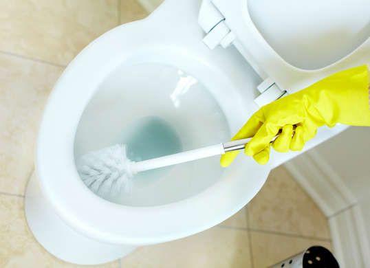 best 25 clean toilet bowl ideas on pinterest. Black Bedroom Furniture Sets. Home Design Ideas