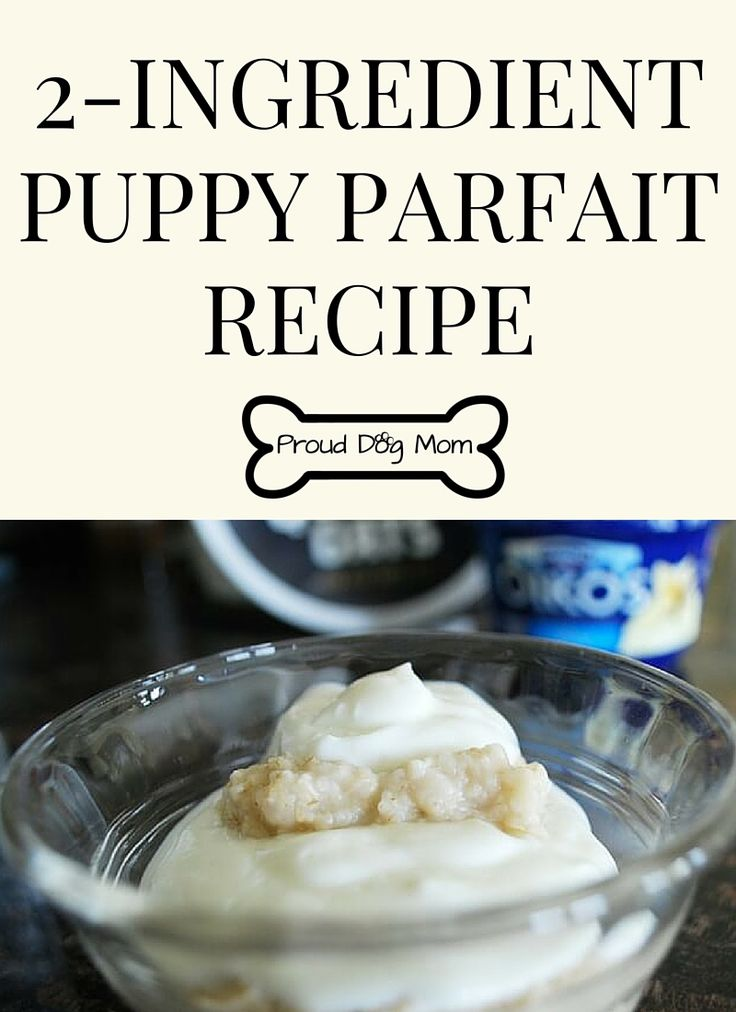Your Dog Will Love This Easy-To-Make 2-Ingredient Puppy Parfait For Breakfast! | DIY Dog Treats | DIY Dog Food |