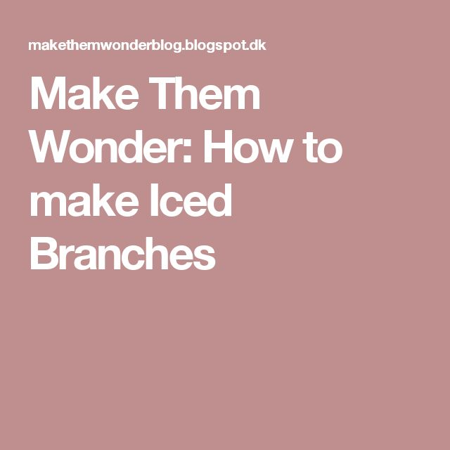 Make Them Wonder: How to make Iced Branches