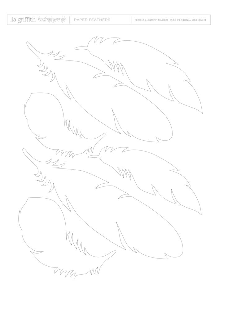 template for feathers
