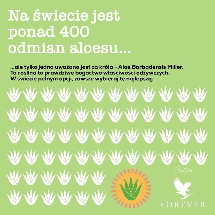 Na świecie jest ponad 400 odmian aloesu. Miej pewność, że wybierasz ten najlepszy. Forever, na zawsze.