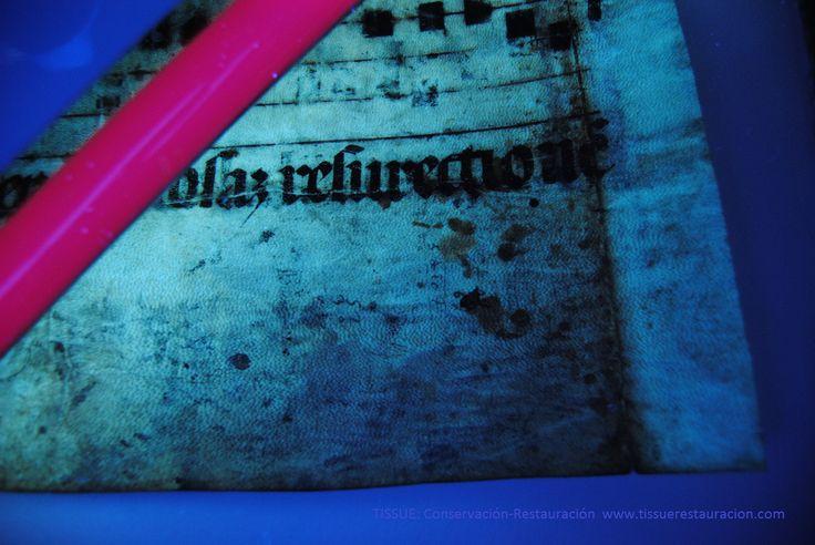 En la imagen podemos ver grafias ocultas  (en la parte inferior del pergamino) gracias a la realización de un exámen organoleptico con luz ultravioleta. Realizado por www.tissuerestauracion.com