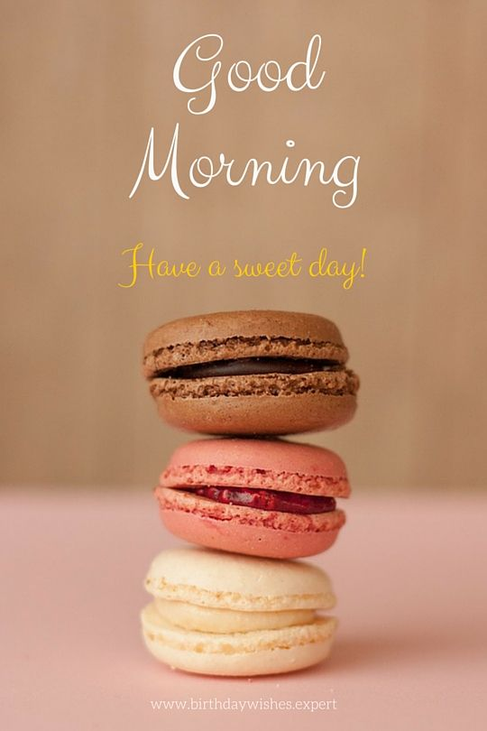 Good Morning Messages French : Good morning have a great day in french