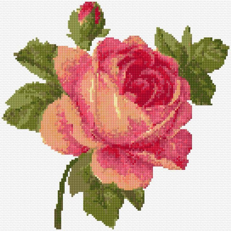 Cross Stitch | Rose xstitch Chart | Design