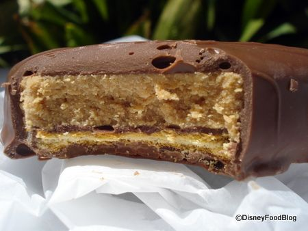 Chocolate-Covered Peanut Butter Sandwich for National Peanut Butter Day! www.disneyfoodblog.com