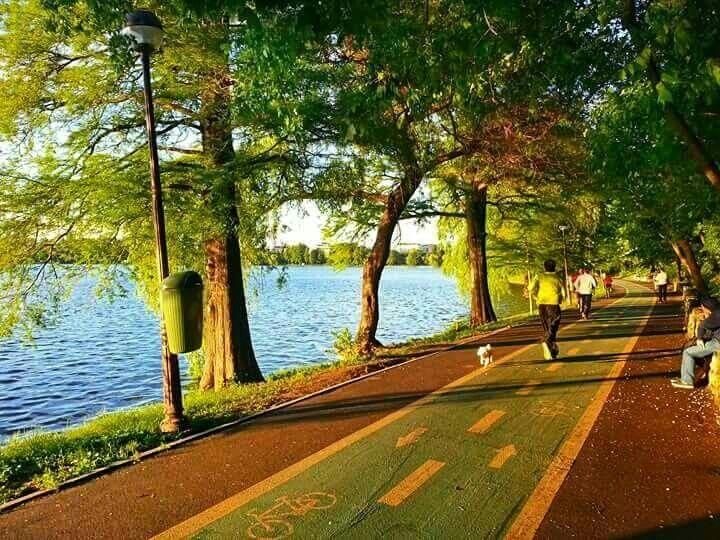 Herastrau Park - photo by Alex Angheluta