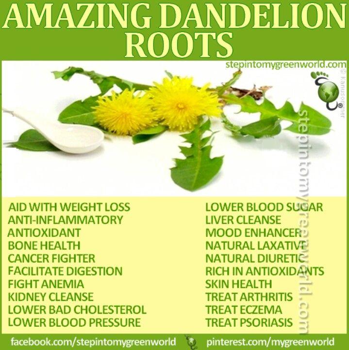 Made dandelion root tea today. Not half bad!