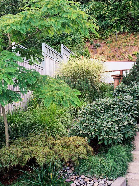 83 best images about garden on pinterest trees backyard for Low maintenance sloping garden ideas