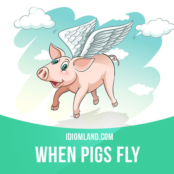 """When pigs fly"" means ""never, impossible"". Example: - Do you think I can get…"