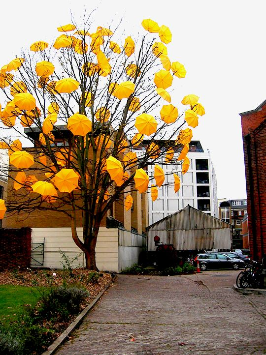 All this rain is making me feel gloomy, but these umbrellas caught in a tree at Wapping power station in London bring joy and a smile. Bloom by Sam Spenser.