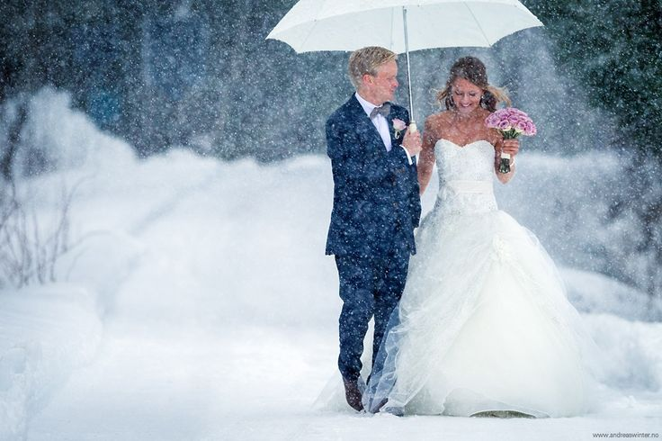 Winter Wedding by Andreas Winter on 500px
