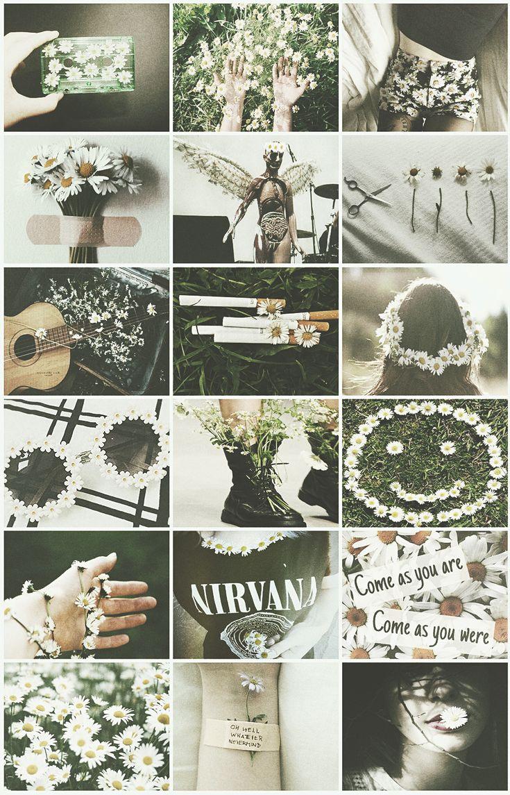 nirvana nirvana aesthetic kurt cobain music music