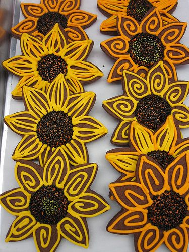 Chocolate Sunflower Cookies