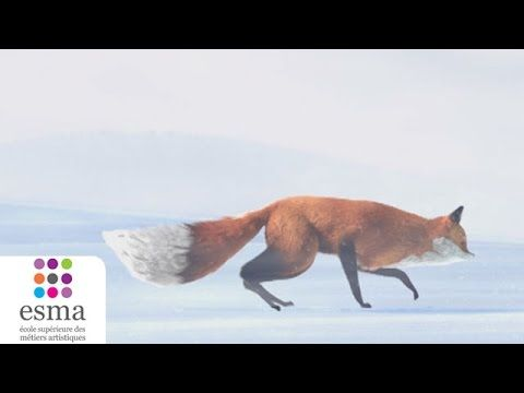 The Short Story of a Fox and a Mouse (Oscars 2016 - Nominated Short Film - Additional List) - YouTube