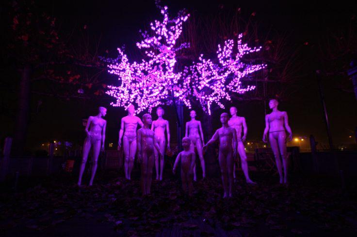LED boom / LED Tree Goes