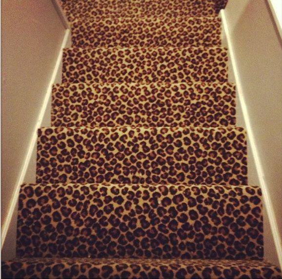 Cheetah Print Carpet On Stairs.