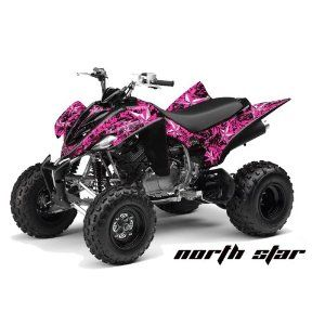 Pink Yamaha quad not exactly this one, but this is on my too buy list!!