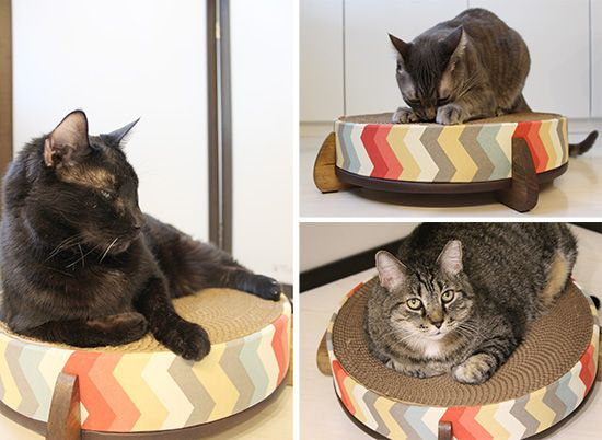 If you're looking for a very special scratcher that both you and your cat will love, then definitely check out The Cat Wheel from Catnap Workshop. I knew these were beautiful when I first saw them on Etsy, but once I had the opportunity to test one with my own cats, I am truly impressed....Read More