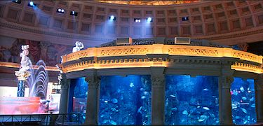 Aquarium at Fall of Atlantis At first glance, this display looks to be made of innocent statues and strictly static display. However, every hour on the hour, the platform becomes the stage for a scene from Greek mythology. The statues surprisingly come alive and the story begins with an animatronic King Atlas deciding which of his two children should take over the ruling of Atlantis.