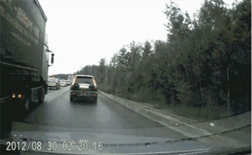 """Share this """"Genius at the wheel, constant danger"""" animated gif image with everyone. Gif4Share is best source of Funny GIFs, Cats GIFs, Dog GIFs to Share on social networks and chat."""