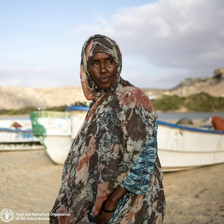 The coastal community in Eyl in #Somalia is beating hunger by fishing. FAO, the Food and Agriculture Organization of the #UnitedNations, provided them with ice boxes, enabling them to keep their catch fresh. Now these fisherfolk have up-scaled their fishing cooperative into an international commercial operation exporting up to 10 tonnes of fish every month to Ethiopia.  Aisha Abdikareen Hersi, one of the beneficiaries of the project, managed to buy a boat and open a guest house with the…