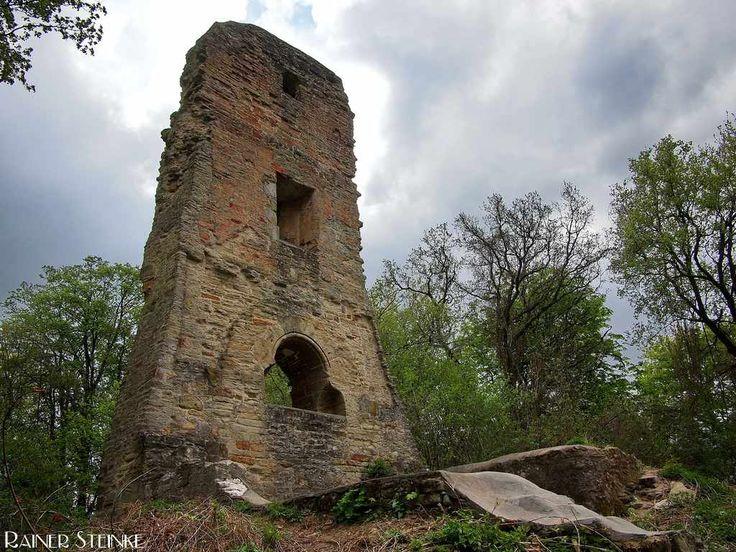 Burgruine Speckfeld im Bärlauchwald. Wer sich im Frühjahr auf die Burgruine Speckfeld im unterfränkischen Landkreis Kitzingen wagt sollte keine Abneigung gegen Knoblauch-Geruch haben denn der ganze Boden des Schlossbergs ist mit Bärlauch bedeckt es ist aber wirklich ein Erlebnis durch den nach Knoblauch riechenden Wald zu wandern.  Von der um 1250 erbauten Burg selbst ist noch ein Teil eines Turmes der Brunnen und ein paar Kellergewölbe erhalten der ehemalige Burggraben ist auch noch gut…