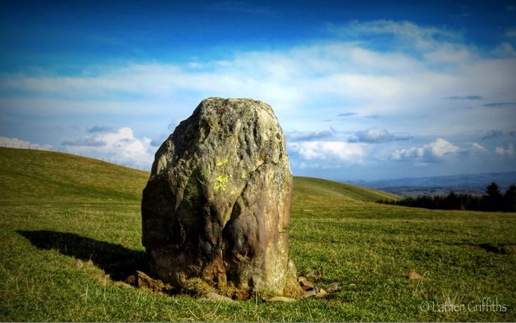 Standing stone near nature reserve / lakes above Pontdolgoch, Caersws.