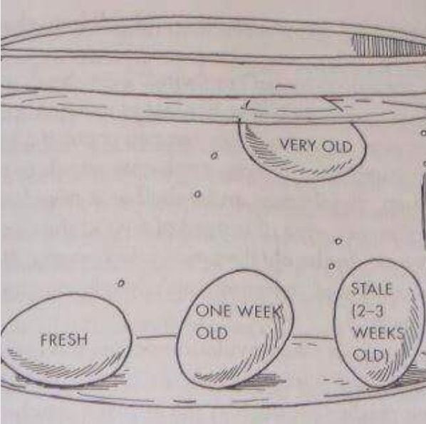 Drop an egg into a glass or bowl of water to tell if it's still fresh.