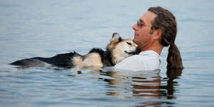 Dog And Owner In The Water
