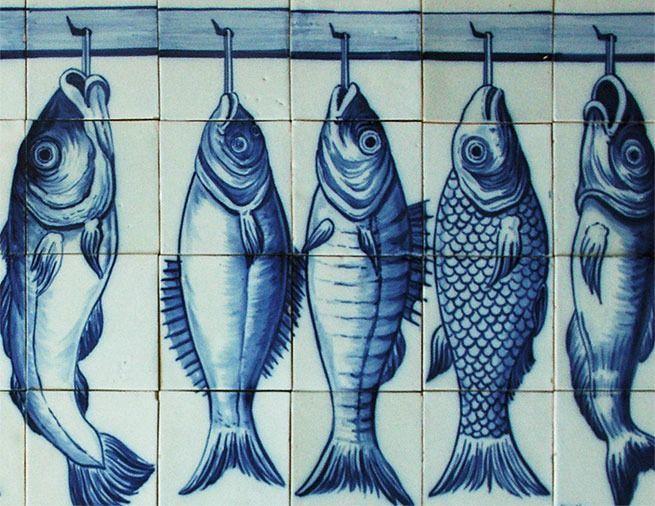 AZULEJOS PORTUGUESES representando várias espécies maravilhosas de peixes da costa portuguesa.