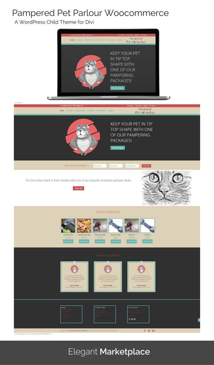 156 best images about divi theme wordpress websites on pinterest web design inspiration - Divi child theme ...