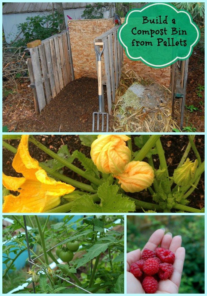 17 Best Images About Composting S H On Pinterest Gardens Cold Weather And Survival