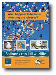 "Problems caused by balloon releases. Once balloons are released, they can become a serious form of marine pollution. Even latex balloons, which are touted as biodegrading as ""fast as an oak leaf"" can take up to 6 months to degrade and kill sharks, whales, dolphins, turtles, etc. in the meantime.  Plants, small trees, reusable banners, kites, etc. are all eco-friendly alternatives to balloons."