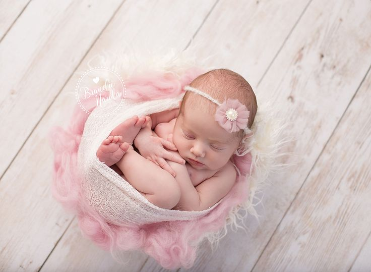 Baby in bucket baby in prop newborn in prop baby girl newborn