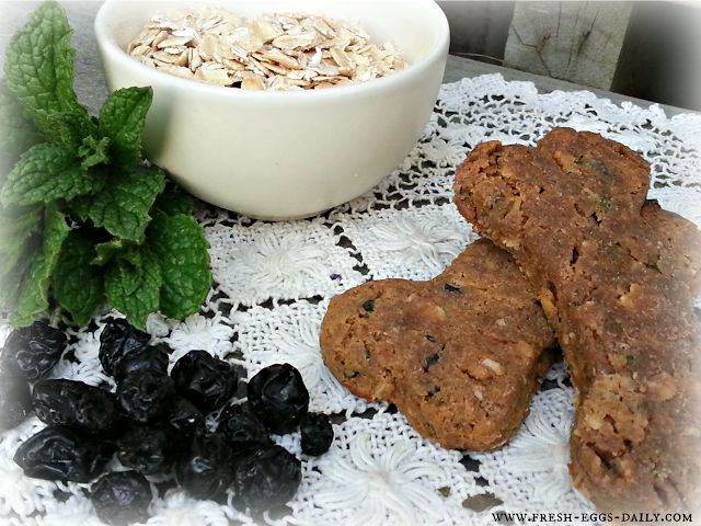 Homemade Grain Free Dog Treats. Today I am sharing my homemade grain free dog treats recipe with you! This is a treat that my picky dog actually likes.