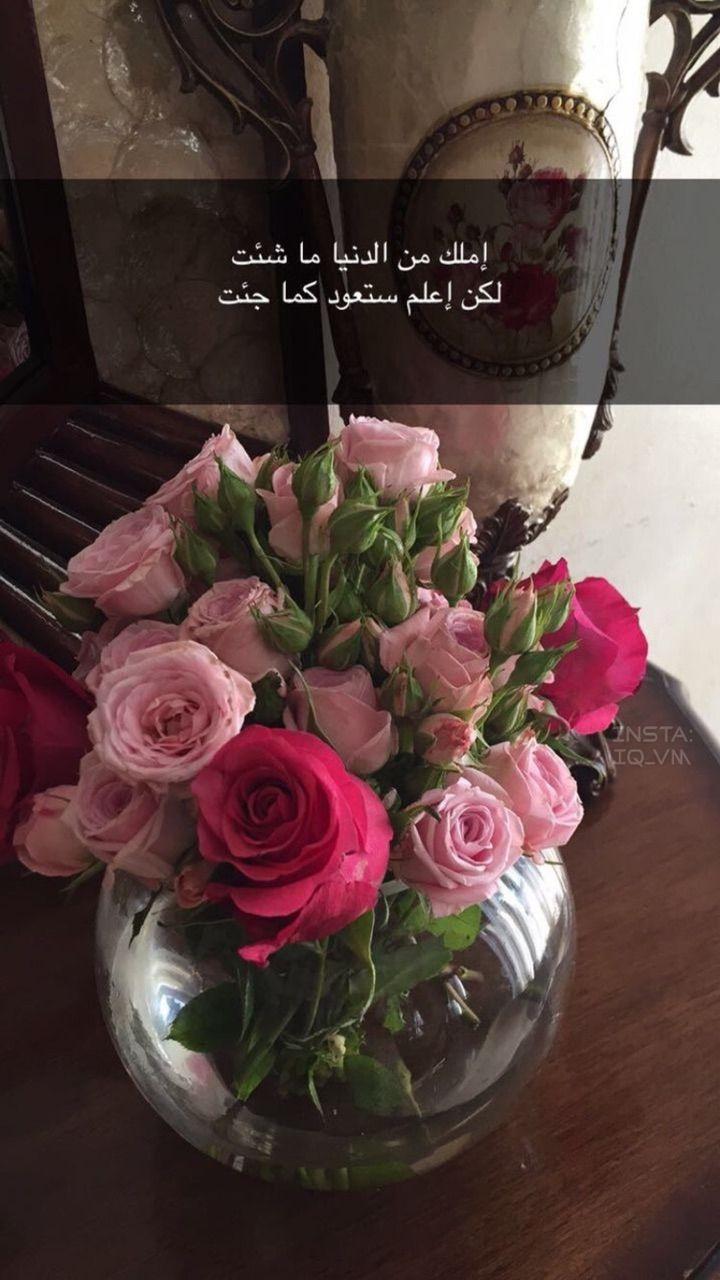 اكسبلور صور افتار افتارات رمزيات رمزيات بنات ستوريات سنابات صور بنات بنات اسئلة ستوري Beautiful Quran Quotes Book Flowers Art Print Gifts