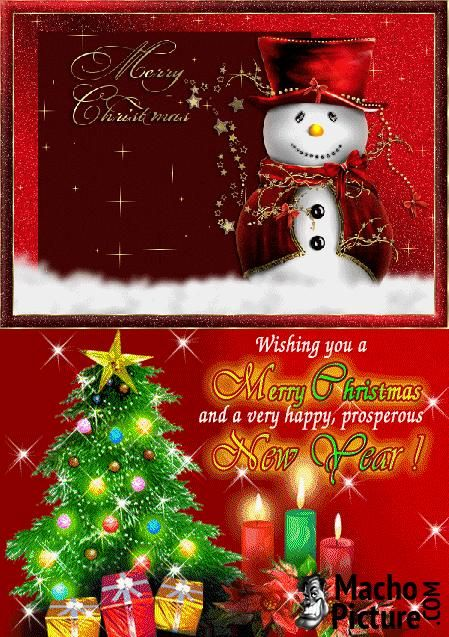 Photos for christmas cards - 3 PHOTO!