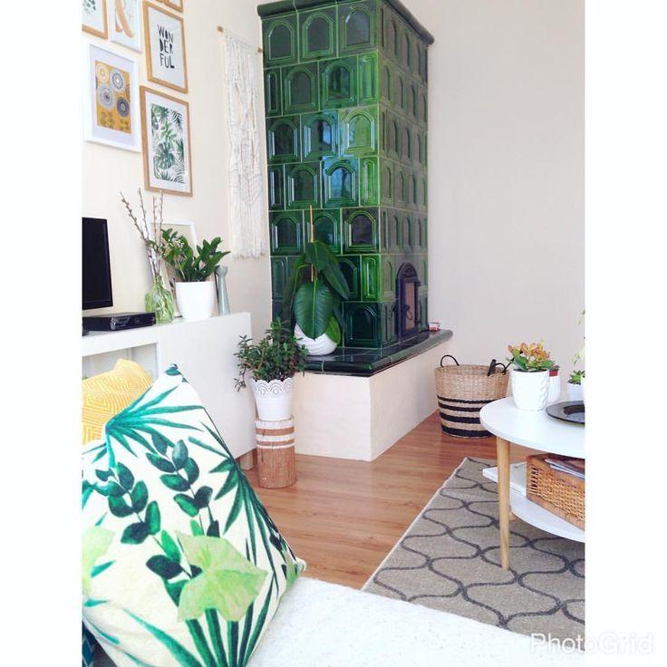 """48 kedvelés, 5 hozzászólás – Emese (@twinstahome) Instagram-hozzászólása: """"Green#instalike#inspo#hungarian…"""""""