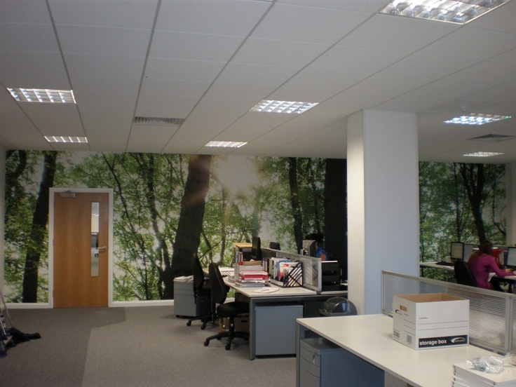 This Surface View installation was well received by all the office employees at Redweb's Bournemouth based Head Office!