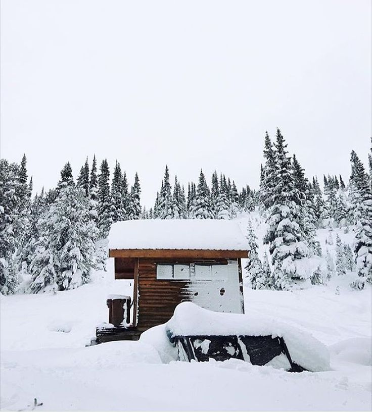 1000 images about cabin getaway on pinterest iceland for Cabine in whistler