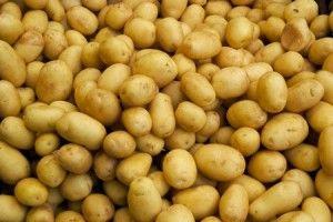 Come conservare e congelare le patate | Come Fare