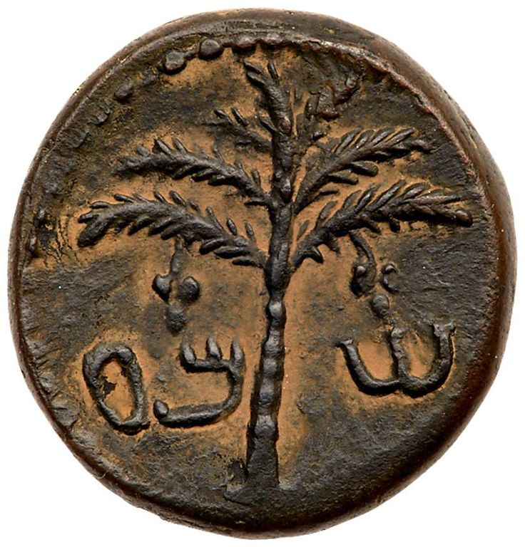 Judaea, Bar Kokhba Revolt. AE Medium Bronze (12.99 g), 132-135 CE EF Judaea, Bar Kokhba Revolt. Æ Medium Bronze (12.99 g), 132-135 CE. 'Sma' (abbreviating Simon; Paleo-Hebrew), seven-branched palm tree with two bunches of dates. 'Year one of the redemption of Israel' (Paleo-Hebrew), vine leaf on tendril. Mildenberg 47 (O2/R12); TJC 258. Nice sandy-brown patina. Extremely Fine. Estimated Value $500 From the Dr. Patrick Tan Collection. The obverse die of this middle bronze coin from the first…