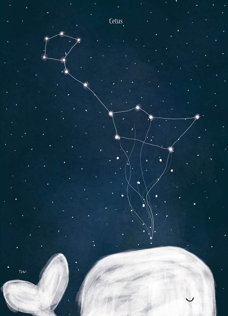 """""""Arctic Constellations"""" - Cetus"""